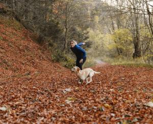Retrouvez la complicité avec votre chien en randonnant en extérieur