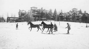Le SkiJoëring, activité hiver avec des chevaux ou des chiens